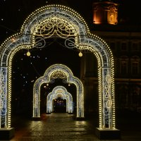 Волшебные ворота! :: Лариса Лунёва