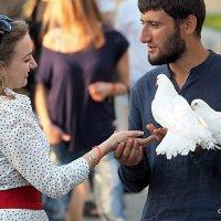 разговор:он она и голуби :: Олег Лукьянов