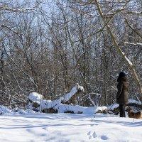 Прогулка в зимнем лесу :: Игорь Сикорский