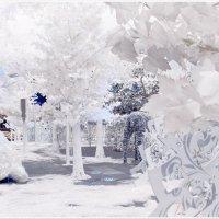 Сказочный лес на Тверской :: Ирина Князева