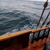 Отдых на море, Крым. Морская прогулка на Карадаг-20. :: Руслан Грицунь