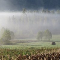 Был туман с утра рассеян:где присел, а где висел он... :: MaOla ***