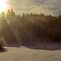 Утро деда мороза :: Alexander Andronik