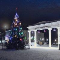 Ёлка на площади П.И.Чайковского. :: Алексей Макшаков