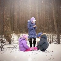зима :: Екатерина Александровна