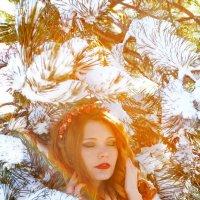 Мороз и солнце :: Татьяна Гордеева