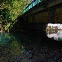 Голубое озеро, Абхазия :: Нелли *