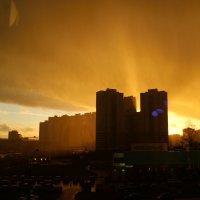 Солнечный дождь в окне :: Sergey Isakov