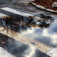 После дождя :: Kris Vinnikova