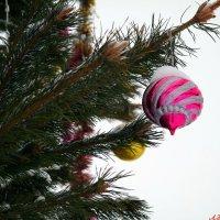 Скоро, уж скоро, встретим Новый Год! :: Андрей Заломленков