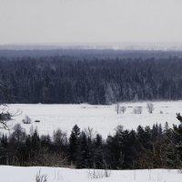 Зимний пейзаж у деревни Карйыл на трассе Глазов – Полом :: Владимир Максимов