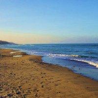 Зеленоградск - море в декабре :: Маргарита Батырева