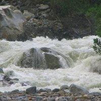 Так начинается река... Горный поток в Цейском ущелье :: Vladimir 070549