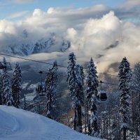 Декабрь в горах :: Виолетта