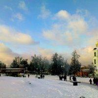 Январь в Царицыно. :: Владимир Драгунский