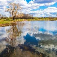 Озеро талой воды :: Любовь Потеряхина