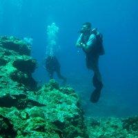 под водой :: alex