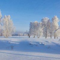 С наступающим Новым годом друзья! :: Николай Мальцев