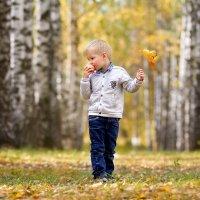 Осеннее настроение :: Оксана Колиева