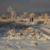 На прогулку к Ангаре... :: Александр Попов