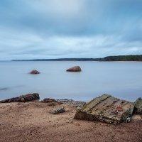 Финский залив, южное побережье. :: Юрий