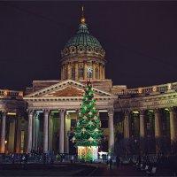Казанский собор в Санкт-Петербурге в новогодние дни :: Ирина Лепнёва