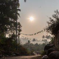 Утро в индийской деревне :: Gotardo Ro