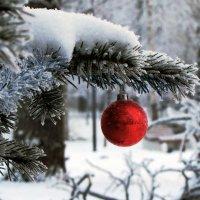 С наступающим Новым годом, друзья! :: Ирина Румянцева
