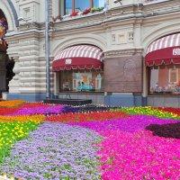 Столица летом :: Валентина Юшкова