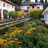 Spain 2016 Granada La Alhambra 8 :: Arturs Ancans