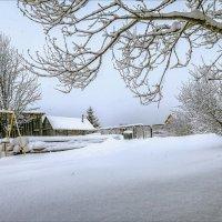 А снег идёт... :: Александр Никитинский