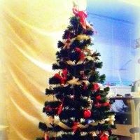 Новогодняя ёлка. :: Мила Бовкун