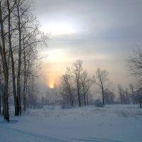 Один из дней декабря :: Екатерина Торганская
