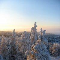 Горнолыжный курорт Рука (RUKA), Финляндия.  Вид из окна :: Елена Павлова (Смолова)
