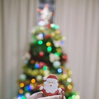 Дед мороз! :: Maddena Gnani