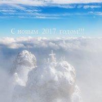С  Новым  2017 Годом!!! :: Николай Ковтун