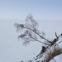 Устремляясь к Байкалу :: Нина
