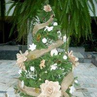 Неординарная елка! :: Надежда