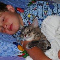 После встречи Нового Года очень сладко спится. :: Лара Гамильтон