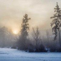 утро ..туман.. :: юрий иванов