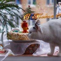 С новым годом, друзья! :: Елена Логачева