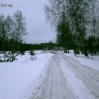 утро нового года... :: александр дмитриев