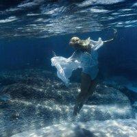 small fish :: Дмитрий Лаудин