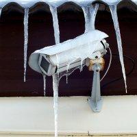 замороженная камера :: Александр Прокудин