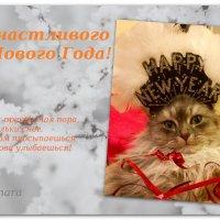 Счастливого Нового года... :: Тамара (st.tamara)