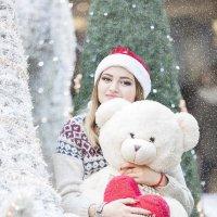 С Новым Годом! :: Olga Kudryashova