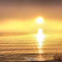 Солнечный ангел :: Елена Гриненко