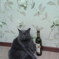 С Новым годом :: наталия