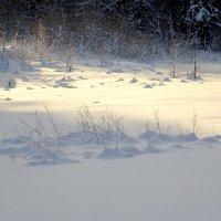 Замечательный зимний денёк :: GalLinna Ерошенко