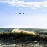 Летять уткы..... :: Геннадий Валеев